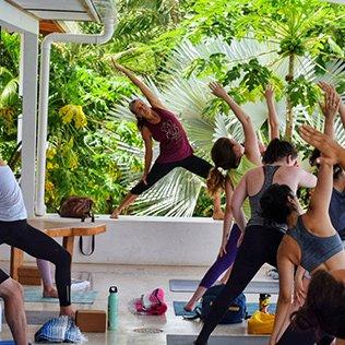 Yoga and Dance Medicine Retreat